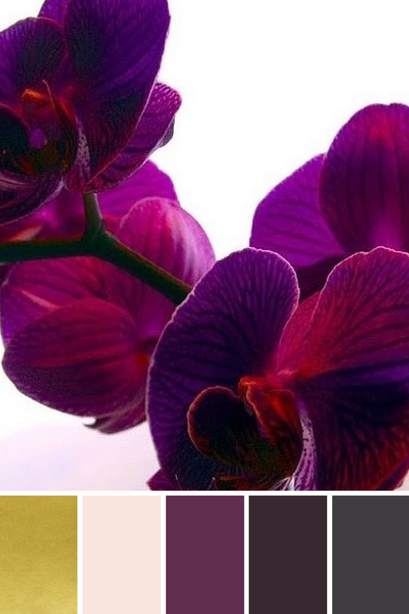 Color Inspiration for Valentine's Decor